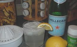 Lemon/Berry Spritzer
